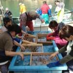 宮城県気仙沼市でのボランティア活動