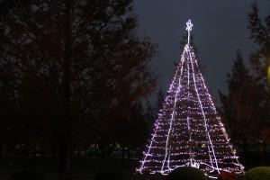 敬和学園大学クリスマスツリー02