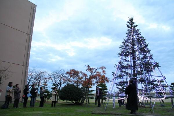 クリスマスツリーに光が灯りました