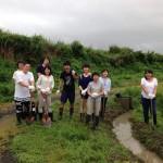 佐渡島で朱鷺のビオトープづくりを行ってきました