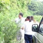 趙ゼミのメンバーがアクティブラーニングで粟島浦村に行ってきました
