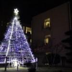 クリスマスツリー点灯式を行います(12月1日)