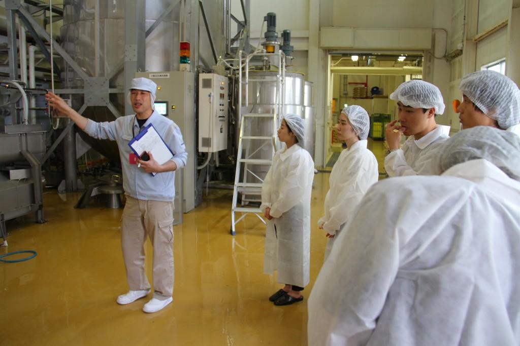 菊水酒造さまで、日本酒造りの工程を見学