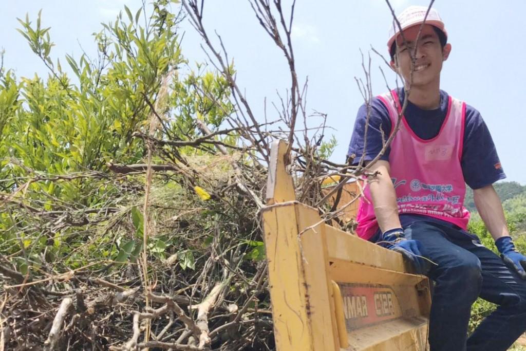 不要な木々を伐採して運搬しました