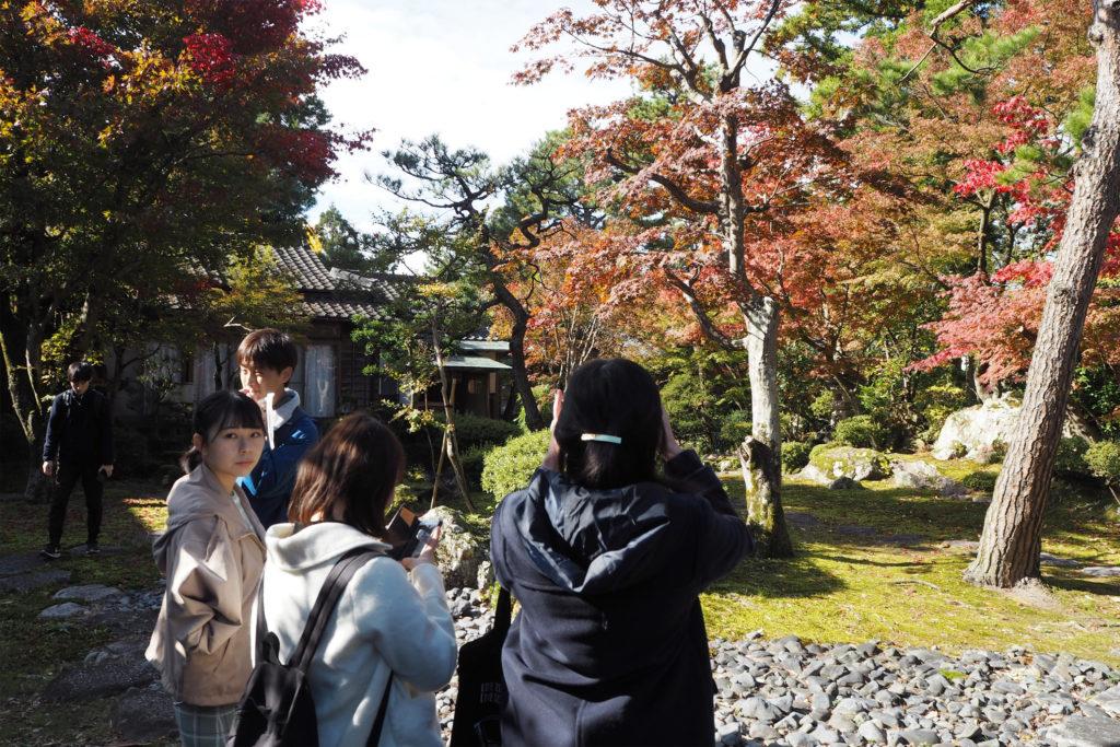 秋晴れの中、紅葉で色づく日本庭園(金升酒造)を撮影