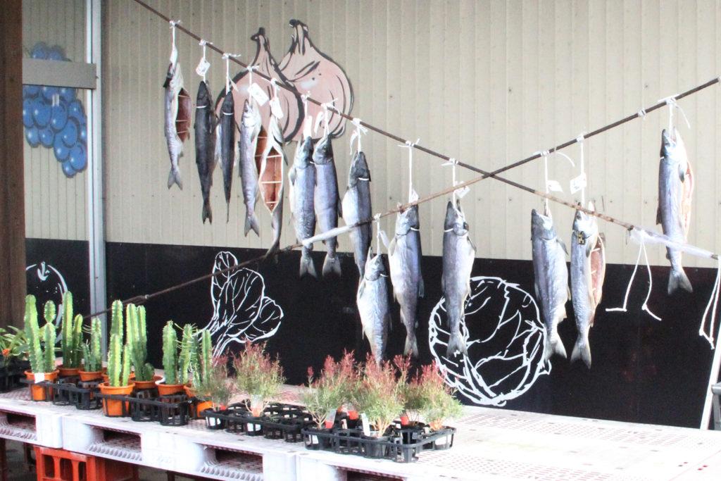 お歳暮として人気の新巻鮭