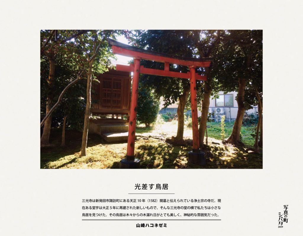 41 光差す鳥居(山﨑ハコネゼミ)
