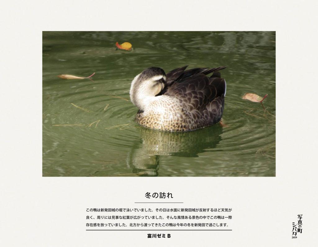 20 冬の訪れ(富川ゼミB)