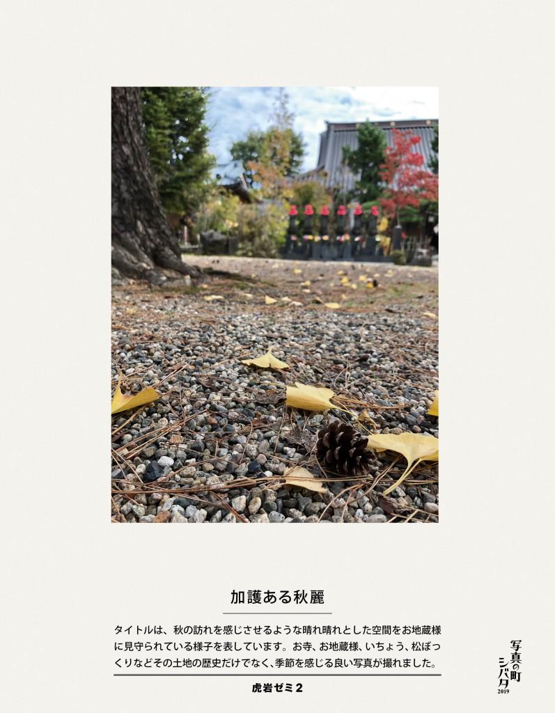 30 加護ある秋麗(虎岩ゼミ2)