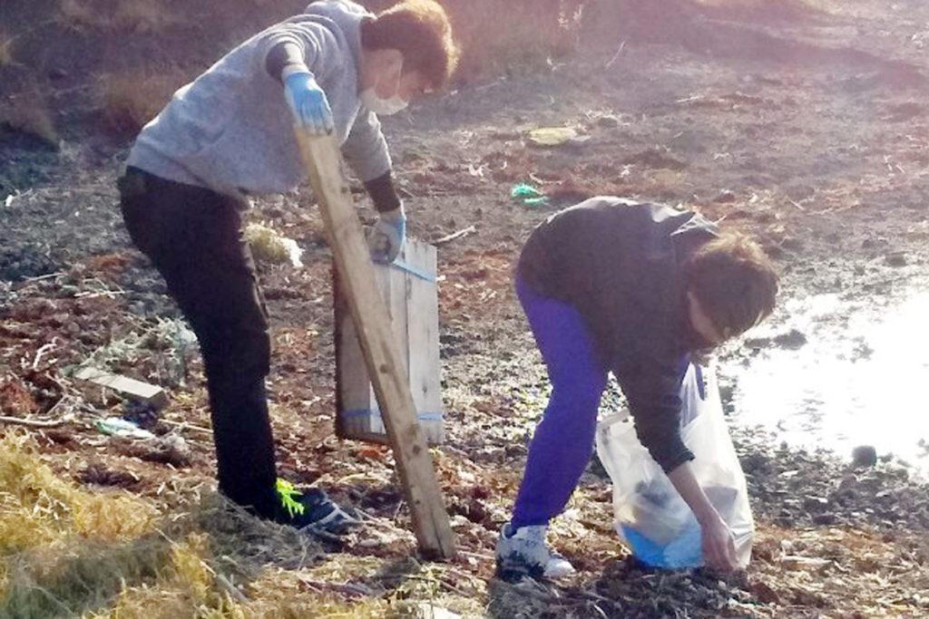 海岸清掃ボランティア