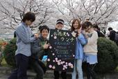 桜と笹団子で新入生歓迎!「お花見ランチ」
