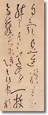 敬和学園大学 図書館だより(2006年8月号)