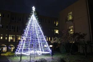クリスマスツリー点灯式を行います(11月29日)