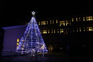 クリスマスツリー点灯式を行います(11月28日)