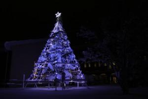 もうすぐ12月、クリスマスツリー点灯式です
