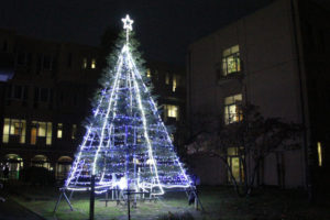 クリスマスツリー点灯式を行います(11月27日)